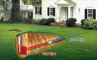 Drain Flies in to the Sewer Pipe System 1
